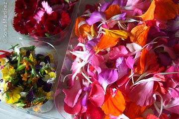 Edible flowers.