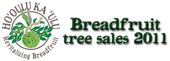 Breadfruit-Festival-2011-tree-sales-web-banner