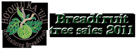 Breadfruit-Festival-2011-tree-sales-web-banner