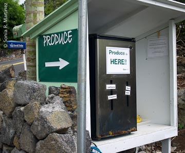 CoastView-Honorsystemrefrigeratorbygate