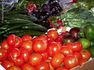 Locally grown vegetables at farmers market.