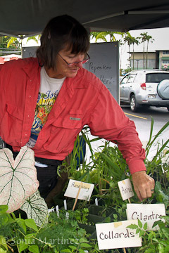 Patty Ferazzi of Makea Nursery.