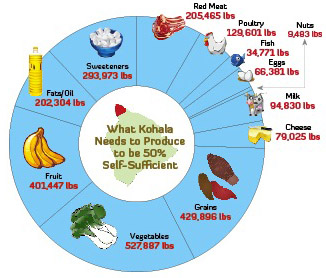 Current consumption in North Kohala.