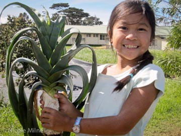 A regular Crop Share participant harvests a leek from Mala'ai: The Culinary Garden of Waimea Middle School.