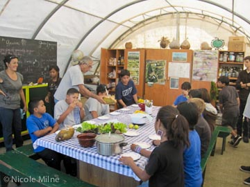 Waimea Middle School 6th graders enjoying coconut water and guacamole wrapped in lettuce leaves. Avocados, limes, and coconuts were provided by Crop Share participants. Thank you for your donations!