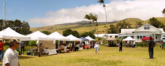 Mid-Week Market at Anna Ranch, Waimea.
