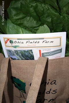 Ohia Fields Farm packed CSA bag with newsletter.