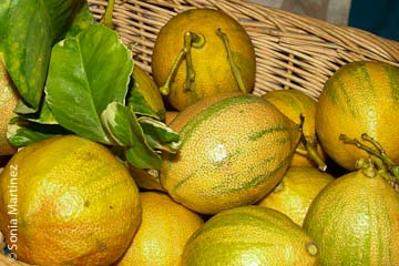 Eureka lemons from La'iku Organic Farm.