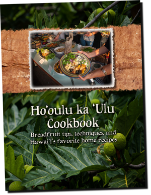 Breadfruit-cookbook-front-cover-300px2